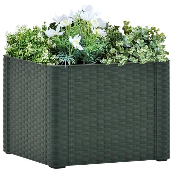 Graziöse Garten-Hochbeet mit Selbstbewässerungssystem Grün 43x43x33 cm Maffra