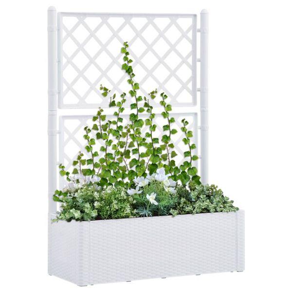 Hochwertige Garten-Hochbeet mit Spalier und Selbstbewässerungssystem Weiß Biloela