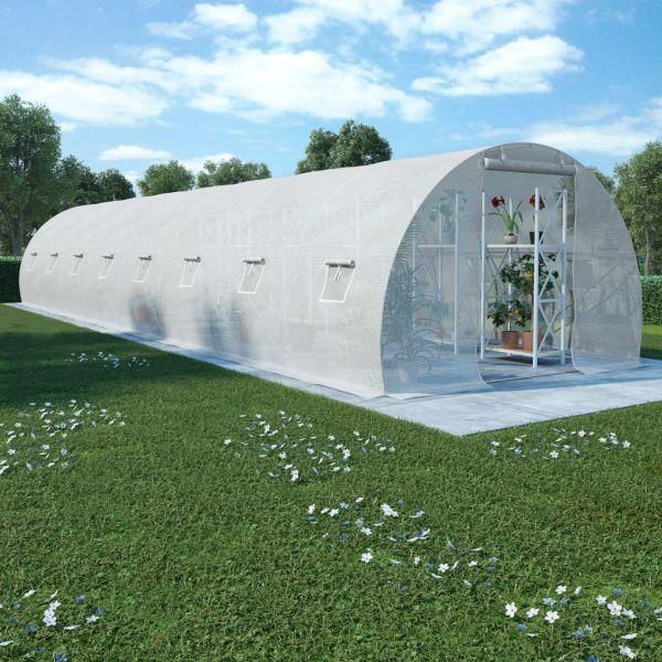 wunderschöne Gewächshaus mit Stahlfundament 1200 x 300 cm