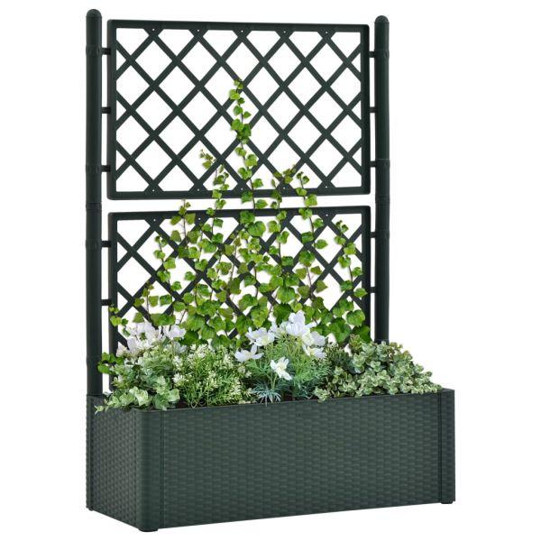 Zauberhafte Garten-Hochbeet mit Spalier und Selbstbewässerungssystem Grün Leongatha